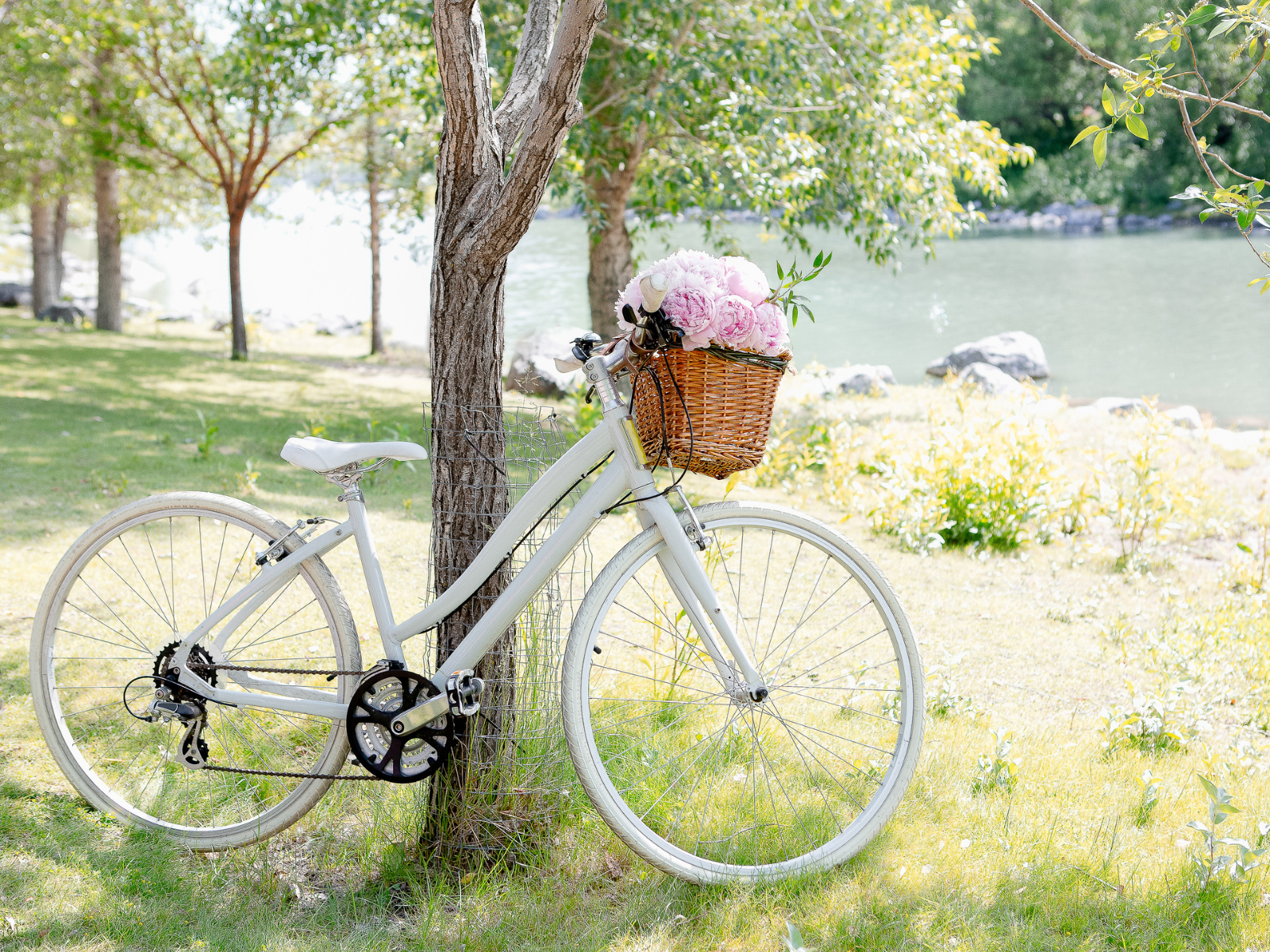 white bike and basket with flowers